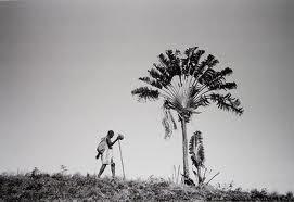 Foto Pierrot Men Fotografie Madagaskar